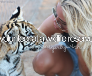 girl, tiger, and animal image