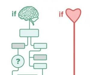 heart, brain, and yes image