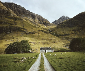 house, nature, and landscape image