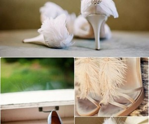 feathers, pumps, and white shoes image