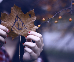 harry potter, deathly hallows, and leaves image