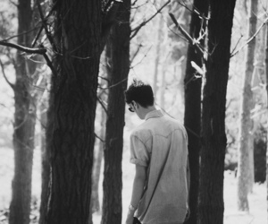 black and white, boy, and forest image