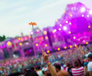 Tomorrowland, party, and flowers image