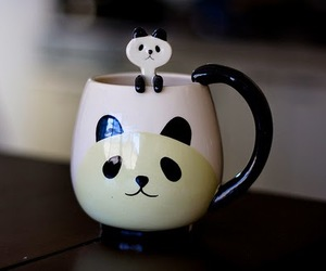 panda, cute, and cup image
