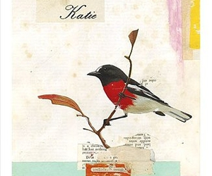 bird, postcard, and Collage image