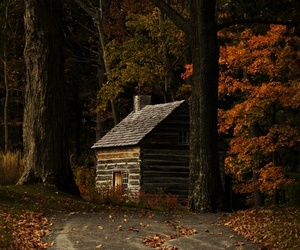 autumn and cabin image
