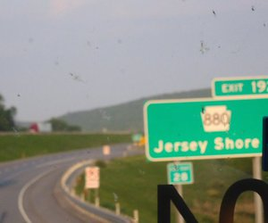 jersey shore and green sign image