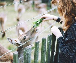 girl, animal, and photography image