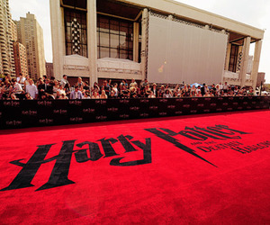 harry potter, red carpet, and hp image