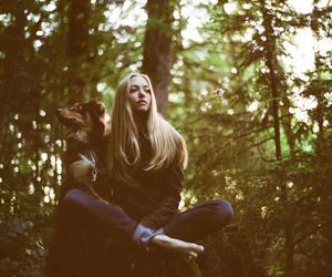 amanda seyfried, dog, and forest image