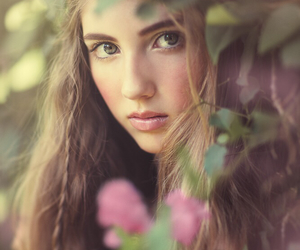 beauty, flowers, and free image
