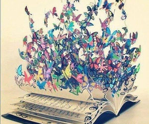 book, butterfly, and colors image