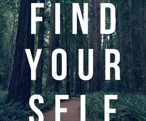 quotes, find, and yourself image