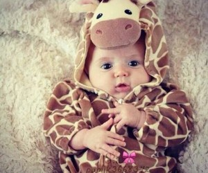adorable, baby, and girrafe image