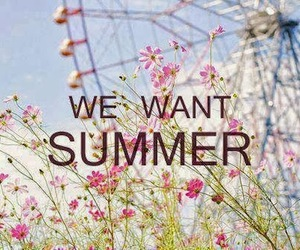 summer, flowers, and want image