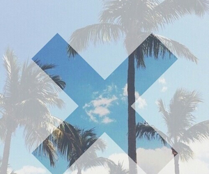 summer, x, and palms image