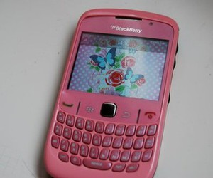 blackberry, flowers, and pink image
