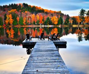 autumn and lake image