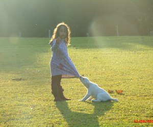 dog, girl, and park image