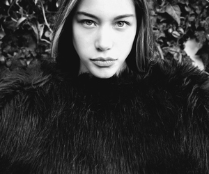 black and white, dark, and fur image