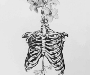 bones and flowers image