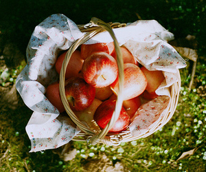 apple, fruit, and basket image