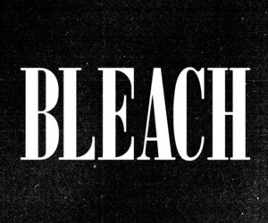 bleach and love image
