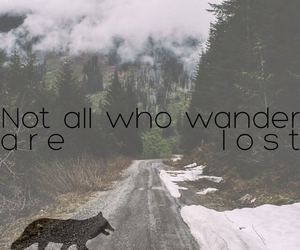 lost, nature, and quote image
