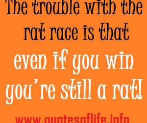 still, trouble, and winning quotes image