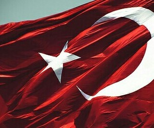 flag, red, and turkey image