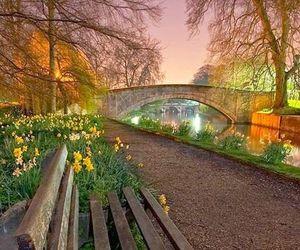 england, cambridge, and bridge image