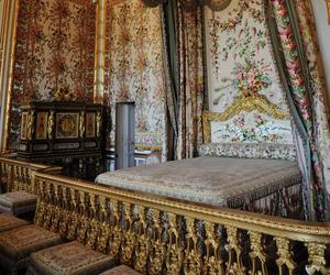 chateau de versailles, palace, and versailles image