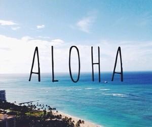 Aloha, summer, and beach image