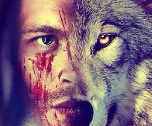 The Originals, klaus, and wolf image