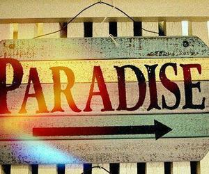 paradise and summer image