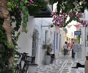 flowers, Greece, and photography image