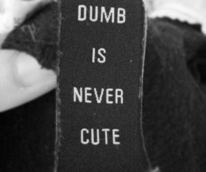 dumb, cute, and quotes image