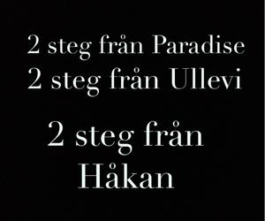 hakan, hh, and håkan hellström image
