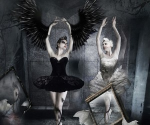 black, black swan, and love image