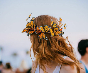 butterfly, hair, and girl image