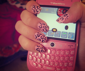 blackberry, leopard, and nails image