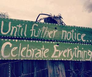 celebrate, life, and quotes image