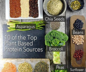 healthy, protein, and vegan image