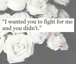 love, fight, and quote image