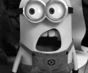minions, what, and funny image