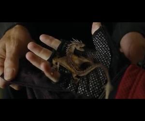 dragon, harry potter, and mini image
