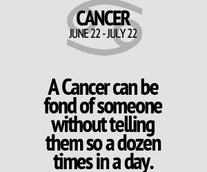 cancer, horoscope, and Leo image