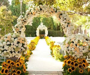 flowers, rose, and wedding image