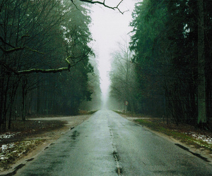 road, forest, and trees image