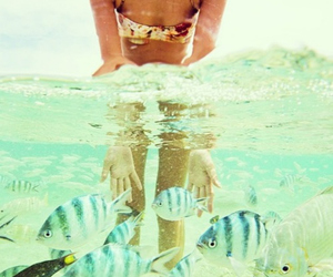 fishes, girl, and ocean image